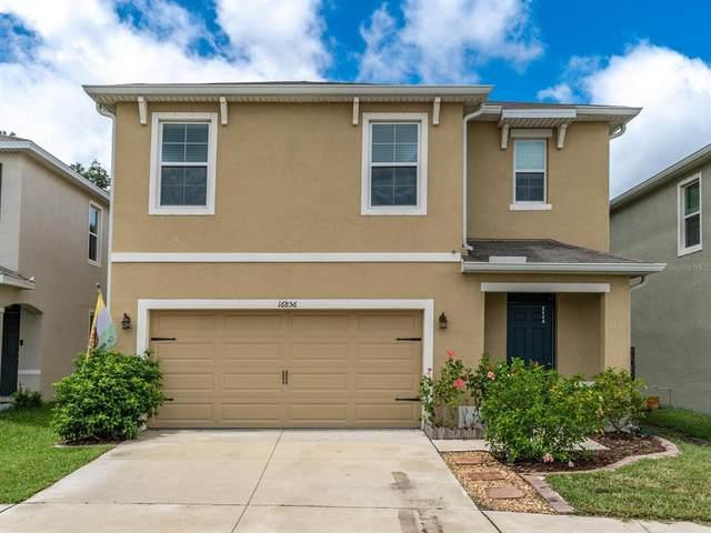 16856 Trite Bend Street, Wimauma, FL 33598 (MLS #T3316945) :: Medway Realty