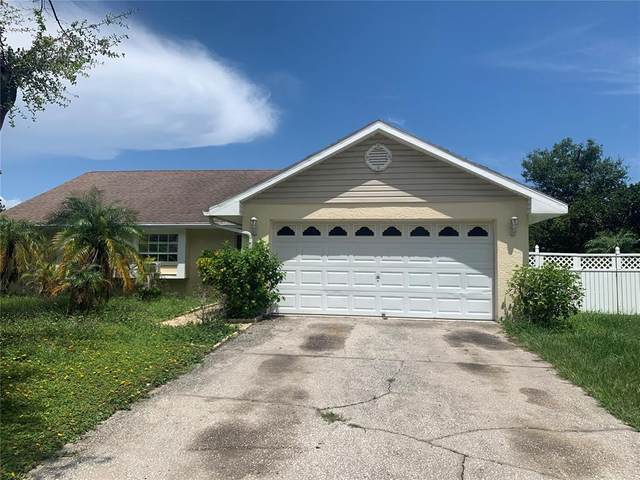 15707 Crying Wind Drive, Tampa, FL 33624 (MLS #T3316975) :: Everlane Realty
