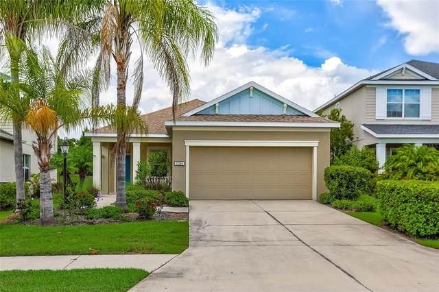 12244 Longview Lake Circle, Bradenton, FL 34211 (MLS #T3316982) :: Stellar Home Sales