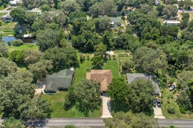 2964 S Cygnet Terrace, Inverness, FL 34450 (MLS #T3316998) :: Premium Properties Real Estate Services