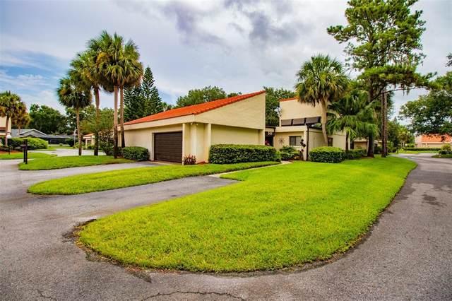 301 Valencia Court N, Plant City, FL 33566 (MLS #T3317064) :: Dalton Wade Real Estate Group