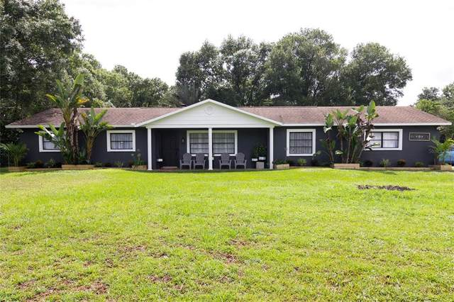15302 Otto Road, Tampa, FL 33624 (MLS #T3317092) :: Zarghami Group
