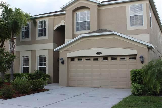 10747 Pictorial Park Drive, Tampa, FL 33647 (MLS #T3317098) :: Vacasa Real Estate