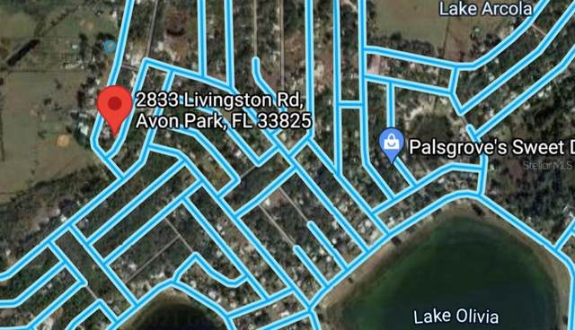 2833 N Livingston Road #29, Avon Park, FL 33825 (MLS #T3317120) :: Frankenstein Home Team