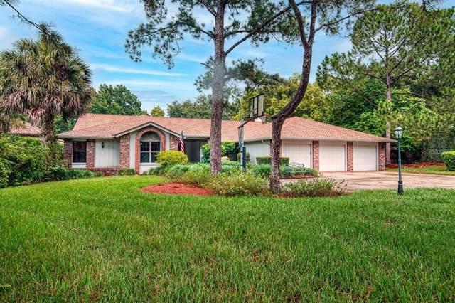 3105 Mossvale Lane, Tampa, FL 33618 (MLS #T3317215) :: Zarghami Group