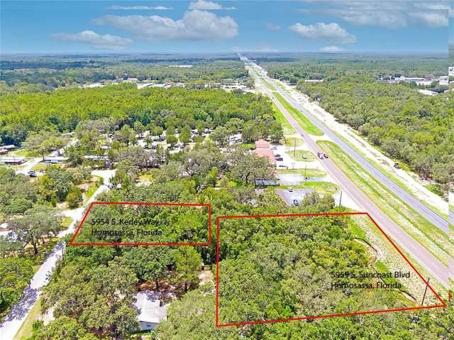 5959 S Suncoast Boulevard, Homosassa, FL 34446 (MLS #T3317231) :: Your Florida House Team