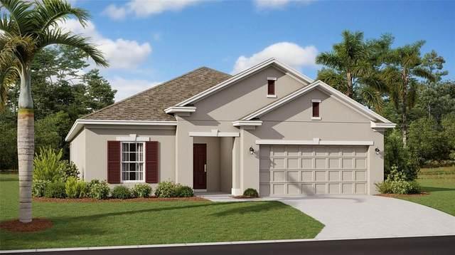 1006 Breggia Court, Leesburg, FL 34788 (MLS #T3317310) :: Dalton Wade Real Estate Group