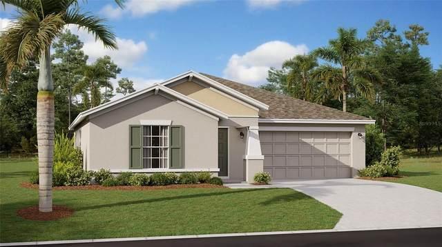 1014 Breggia Court, Haines City, FL 33844 (MLS #T3317331) :: Dalton Wade Real Estate Group