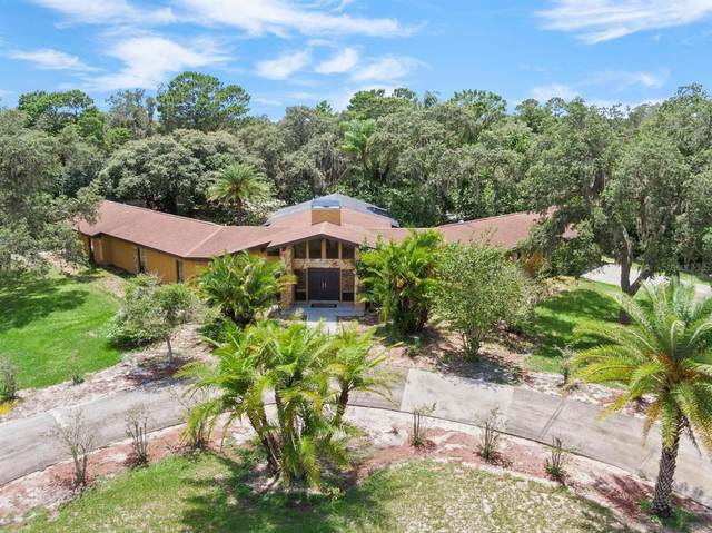 12207 Timberlake Road, Riverview, FL 33569 (MLS #T3317387) :: Everlane Realty