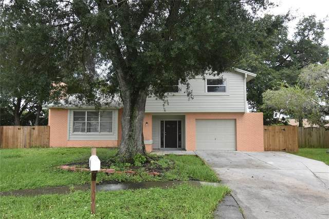 7714 Palmbrook Drive, Tampa, FL 33615 (MLS #T3317434) :: Zarghami Group