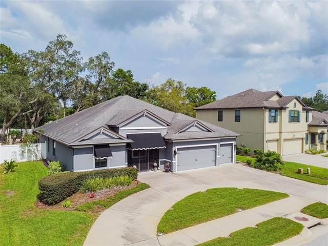 698 Tierra Drive, Spring Hill, FL 34609 (MLS #T3317454) :: Zarghami Group