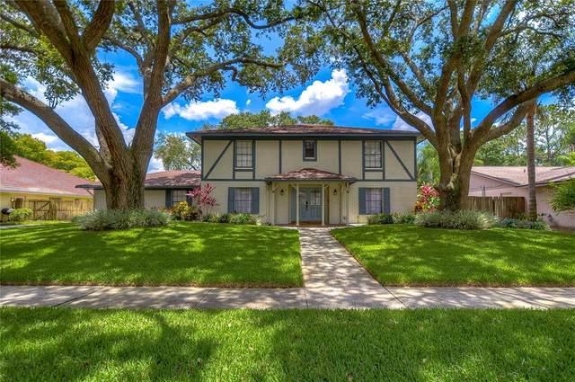 4219 Cartnal Avenue, Tampa, FL 33618 (MLS #T3317493) :: Zarghami Group