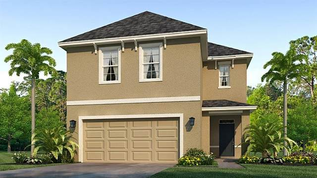 7561 Cypress Walk Drive, New Port Richey, FL 34655 (MLS #T3317578) :: Griffin Group