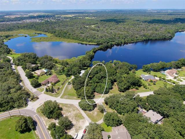 13013 Shadow Run Boulevard, Riverview, FL 33569 (MLS #T3317606) :: The Paxton Group