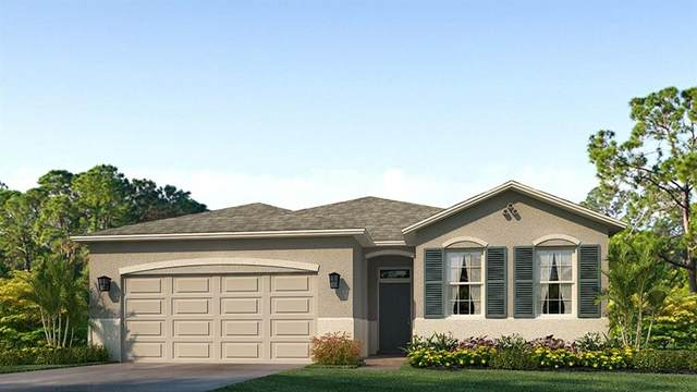 7937 Wheat Stone Drive, Zephyrhills, FL 33540 (MLS #T3317646) :: The Home Solutions Team | Keller Williams Realty New Tampa