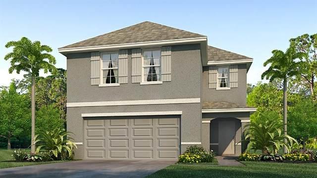 16770 Kingman Reef Street, Wimauma, FL 33598 (MLS #T3317669) :: The Duncan Duo Team