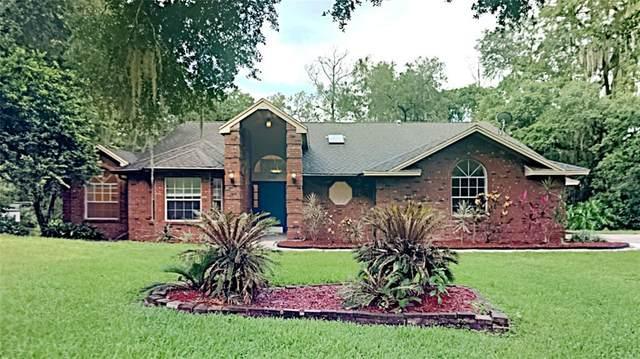 14162 Mastwood Way, Orlando, FL 32832 (MLS #T3317678) :: Cartwright Realty
