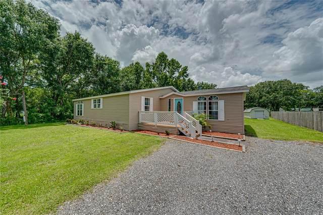 6005 Woodsman Drive, Wesley Chapel, FL 33544 (MLS #T3317825) :: Zarghami Group