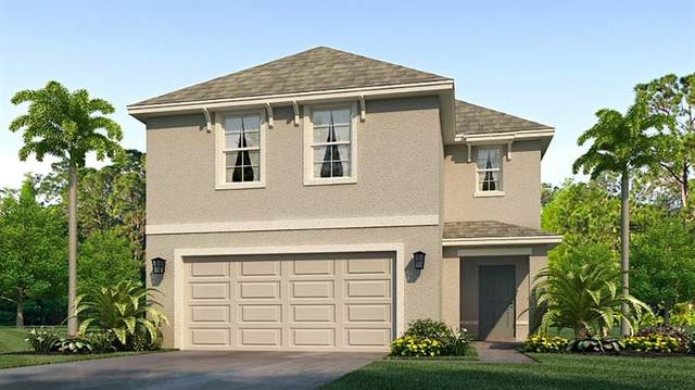 5029 Granite Dust Place, Palmetto, FL 34221 (MLS #T3318025) :: Zarghami Group