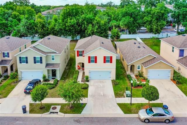 10118 Hawk Storm Avenue, Tampa, FL 33610 (MLS #T3318035) :: Zarghami Group
