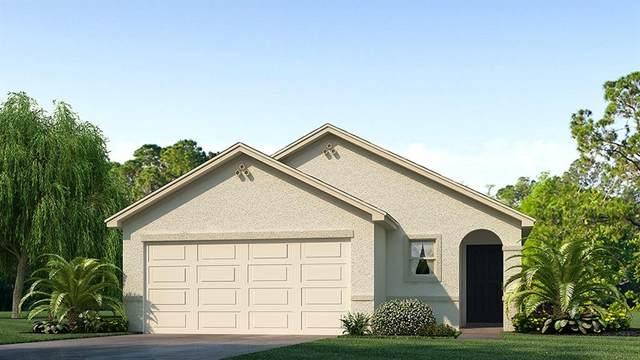 12136 Lily Magnolia Lane, Riverview, FL 33579 (MLS #T3318038) :: Charles Rutenberg Realty