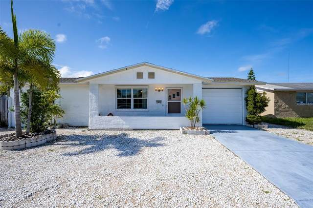 3428 Umber Road, Holiday, FL 34691 (MLS #T3318058) :: Premium Properties Real Estate Services