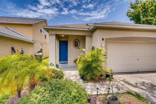 8534 Deer Chase Drive, Riverview, FL 33578 (MLS #T3318059) :: Zarghami Group