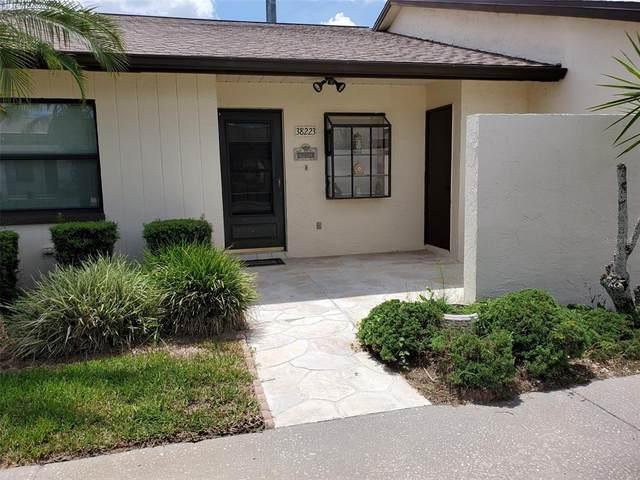 38223 Boxwood Drive #38223, Zephyrhills, FL 33542 (MLS #T3318108) :: CGY Realty