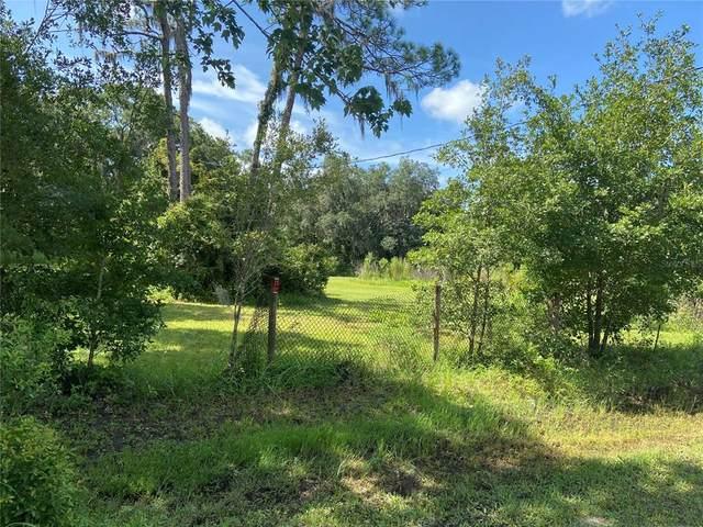 6819 Brookridge Trail, Lakeland, FL 33810 (MLS #T3318174) :: Your Florida House Team