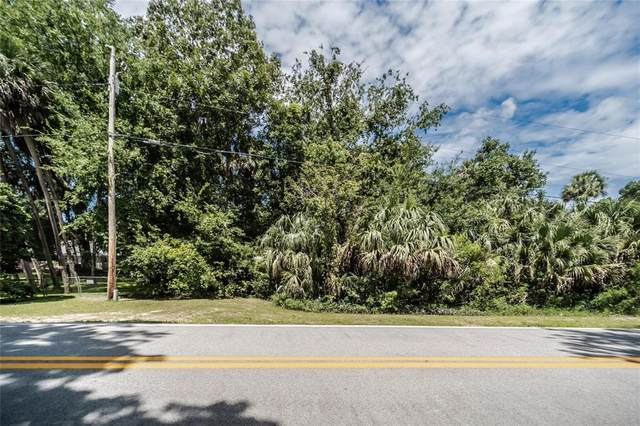 Halabrin Rd, Haines City, FL 33844 (MLS #T3318183) :: Dalton Wade Real Estate Group