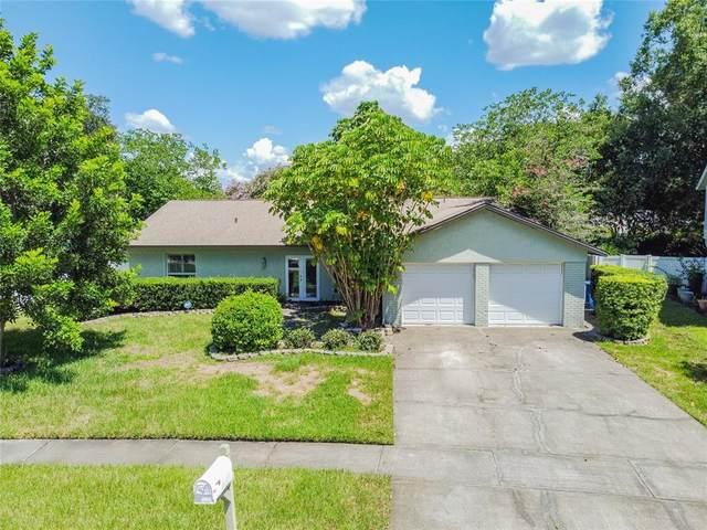 15705 Springmoss Lane, Tampa, FL 33624 (MLS #T3318196) :: Zarghami Group
