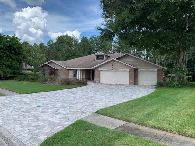 18234 Clear Lake Drive, Lutz, FL 33548 (MLS #T3318206) :: Aybar Homes