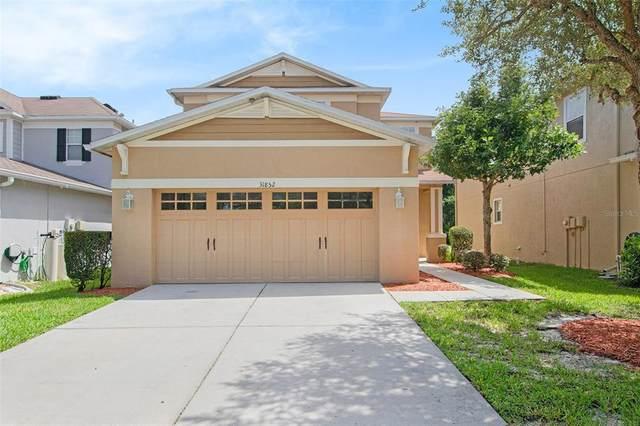 31852 Spoonflower Circle, Wesley Chapel, FL 33545 (MLS #T3318299) :: Vacasa Real Estate