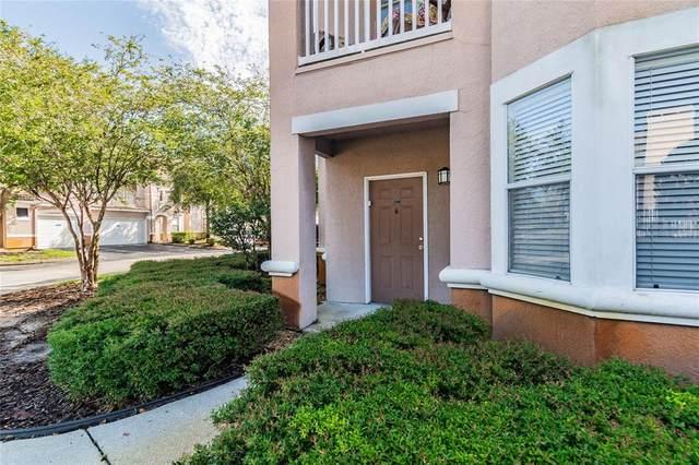 10522 Villa View Circle #10522, Tampa, FL 33647 (MLS #T3318360) :: Stellar Home Sales