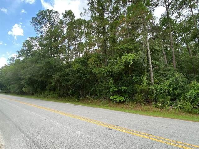 West Dr., Wesley Chapel, FL 33543 (MLS #T3318368) :: Everlane Realty
