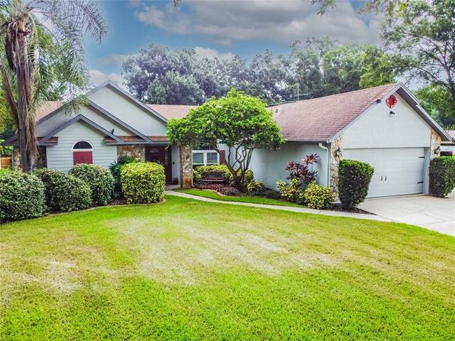 3427 Fallview Court, Land O Lakes, FL 34639 (MLS #T3318418) :: Cartwright Realty