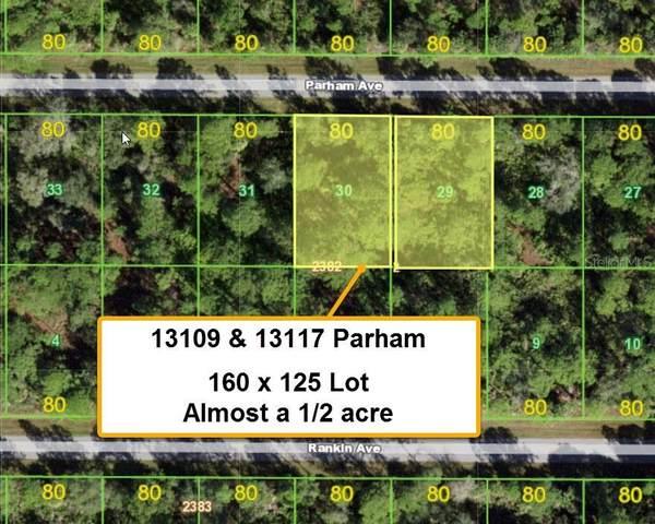 13109 Parham Avenue, Port Charlotte, FL 33953 (MLS #T3318542) :: Cartwright Realty