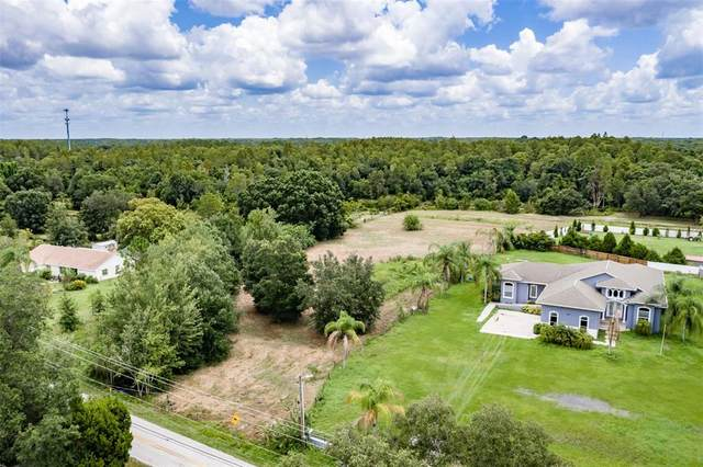 16905 Tobacco Road, Lutz, FL 33558 (MLS #T3318577) :: Rabell Realty Group