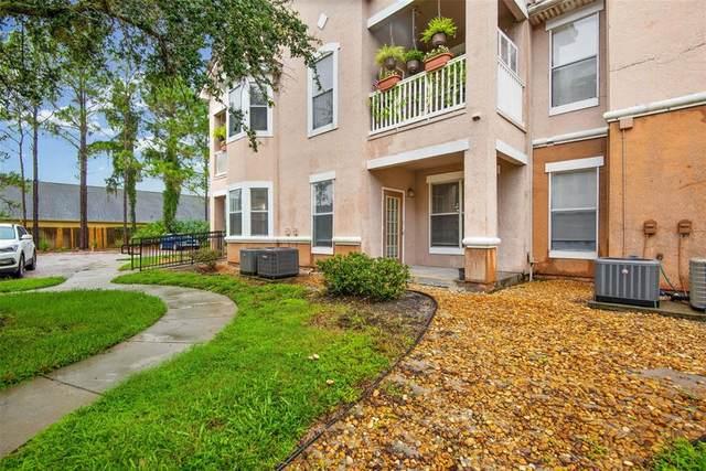 17958 Villa Creek Drive #17958, Tampa, FL 33647 (MLS #T3318719) :: Stellar Home Sales