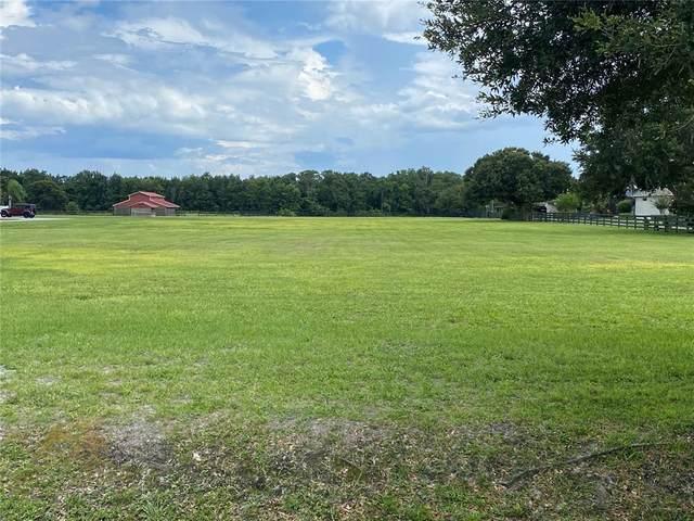 18609 Dorman Road, Lithia, FL 33547 (MLS #T3318726) :: Zarghami Group