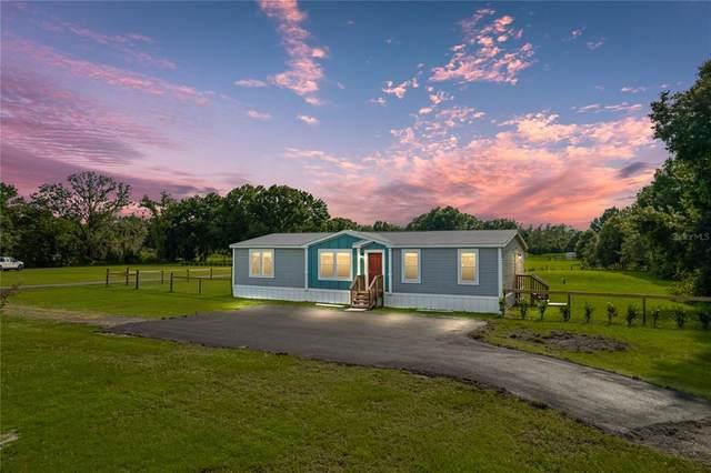 6417 Fletcher Road, Plant City, FL 33565 (MLS #T3318735) :: Cartwright Realty