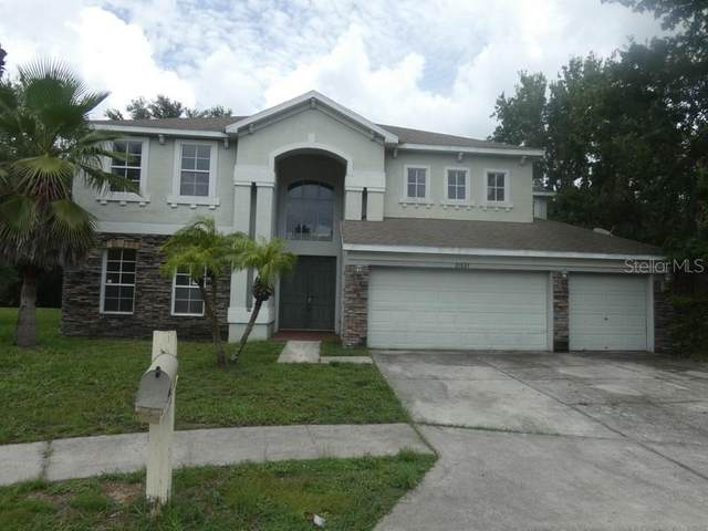 21537 Wilderness Lake Boulevard, Land O Lakes, FL 34637 (MLS #T3318741) :: The Hustle and Heart Group