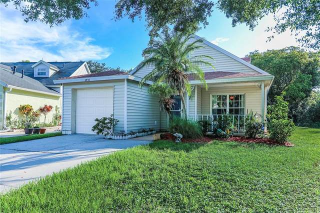 2447 Sagemont Drive, Brandon, FL 33511 (MLS #T3318824) :: Century 21 Professional Group