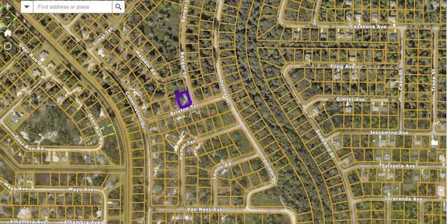 Brixton Terrace, North Port, FL 34291 (MLS #T3318830) :: GO Realty