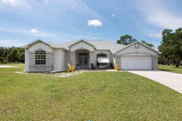 12727 Morgan Road, Hudson, FL 34669 (MLS #T3318888) :: Zarghami Group