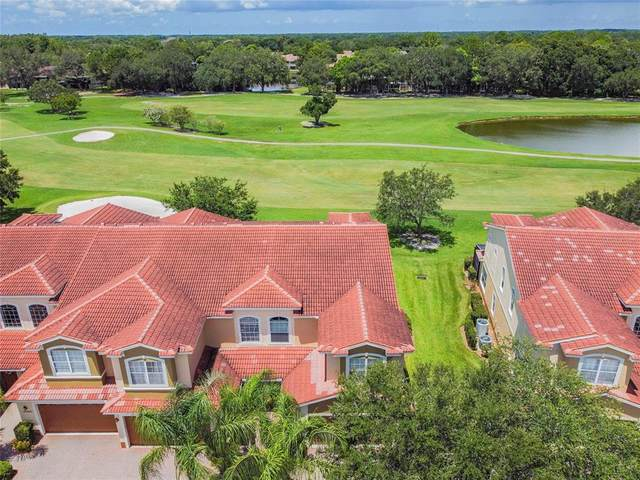 13946 Clubhouse Drive, Tampa, FL 33618 (MLS #T3318904) :: Zarghami Group