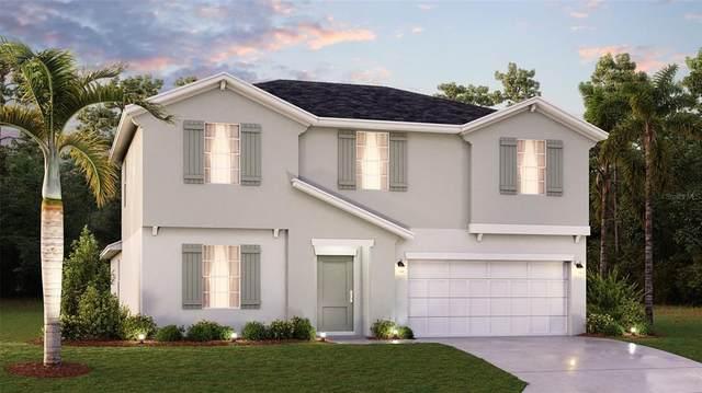 5131 Four Strand Court, Saint Cloud, FL 34772 (MLS #T3318939) :: Zarghami Group