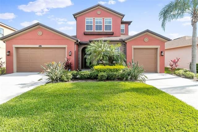 28714 Tavira Court, Wesley Chapel, FL 33543 (MLS #T3318984) :: Team Bohannon