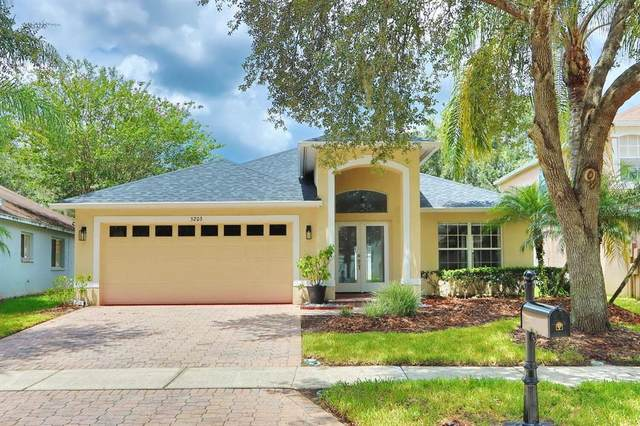5203 Abbey Park Avenue, Tampa, FL 33647 (MLS #T3318987) :: Realty Executives