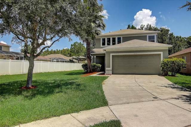 18243 Portside Street, Tampa, FL 33647 (MLS #T3318992) :: Vacasa Real Estate